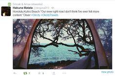 Hakuna Matata for #OlicityTravels - Day 3