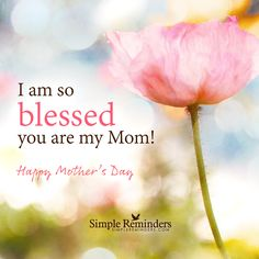 I am blessed you are my Mom by Simple Reminders Blessed Quotes, I Am Blessed, Blessed Mother, Happy Mom, Happy Mothers Day, Miss Mom, Everything Is Energy, Simple Reminders, Mom Day