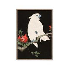 Ohara Koson, Cockatoo, Crane Bird, Tree Branches, Japanese Prints, Animals Images, Limited Edition Prints, Vintage Japanese, Pomegranate