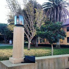 Stanford in December