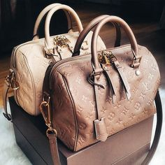 Curvy Fashion Louis Vuitton Bags