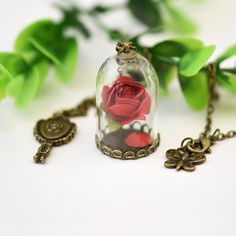 Lady Retro Glass Vial Necklace Pendant, Natural Rose Red Flower Little Prince Necklace Jewelry