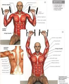 Shoulder Press Extrem - Healthy Fitness Workout Training Body