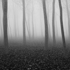 191. Wandering by S719, via Flickr