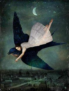 Volando entre los sueños