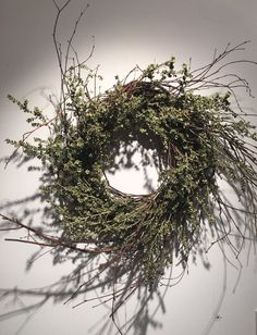 Twisted Birch Wreath by CerridwensGardens on Etsy