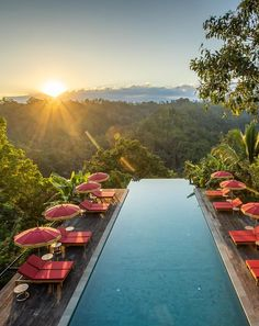 The resort appeals to travelers seeking luxury sanctuaries and those who cherish the essential quality of cuisine, excellent sleep, and privacy. There are only 16 villas, and they blend indoor and outdoor spaces, opening up to panoramic views of the misty river forests of central Bali. #ubudbalihotelluxury #ubudluxuryhotel #luxuryhotelsubud #ubudluxuryvillas #ubudbalihotelvillas #besthotelsinubudbali #bestvillasinbali #bestbalivillasluxury #balihoneymoon #balihotelpool #balihotelarchitecture Luxury Hotels Bali, Ubud Bali Hotels, Beach Hotels, Hotels And Resorts, Best Of Bali, Bali Honeymoon, Wellness Resort, Hotel Pool, Forests