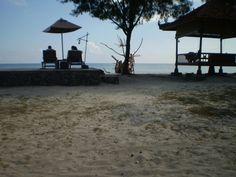 Lombok exotic