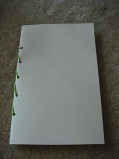 Make a Leonardo da Vinci Journal for inventions, sketches and mirror writing from Art Smarts 4 Kids