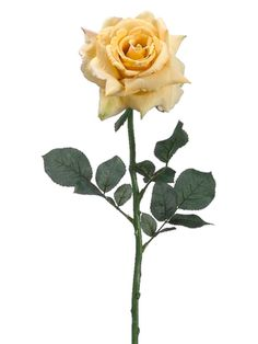 Club Pack of 12 Artificial Yellow Diana Rose Silk Flower Stems 26 9817002   ChristmasCentral