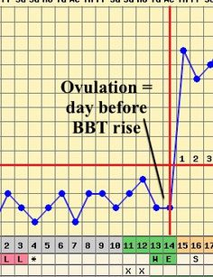 Understand the role of BBT in fertility charting Learn how to use BBT to detect ovulation Fertility Food For Women, Basal Body Temperature Chart, Increase Progesterone, Fertility Chart, Cervical Mucus, Trying To Conceive, Pregnancy Care, Pregnancy