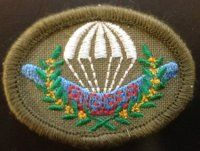 Parachute Rigger Patch Australian Defence Force, Visual Communication, Patches, Wings, Concept, Feathers, Feather, Ali