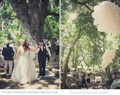 DIY Forest Wedding - love the white pom poms in the trees Forest Wedding, Woodland Wedding, Dream Wedding, Wedding Day, Hanging Flowers, I Got Married, In The Tree, Friend Wedding, Weeding