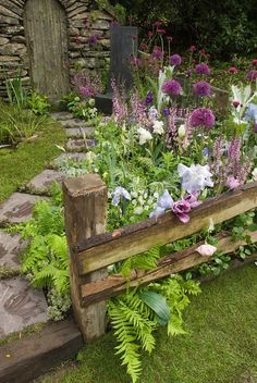 Amazing garden with lawn grass, irises, allium, in pink, lavender and blue color theme tones in late spring bloom