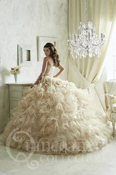 Quinceanera Collection 26816