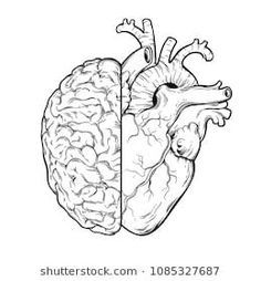 Hand drawn line art human brain and heart halfs - Logic and emotion priority concept. Print or tattoo design isolated on white background vector illustration Geometric Heart Tattoo, Geometric Art, Brain Tattoo, Brain Illustration, Line Art Tattoos, Tattoo Art, Tatoos, Line Art Vector, Hand Art