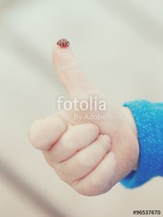 Red ladybird standing on the tip of the finger of a human child hand making…