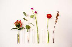 Vase / Home Office / Bud Vase / Minimalist / Flowers / Wall