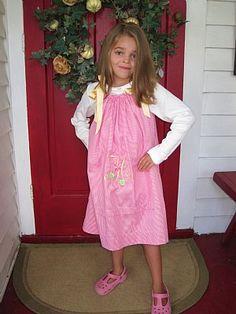Raspberry Fizz Dress