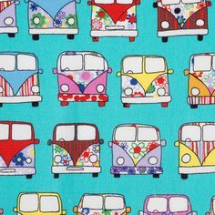 Campervans Mint