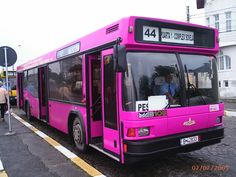 File:Constanta pink <b>bus</b>. Pink Love, Pretty In Pink, Pink Purple, Pink Clocks, Bus Route, Magic School Bus, Busses, Small Towns, My Favorite Color