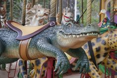 Carousel Alligator Audubon Zoo Carousel in New Orleans. Audubon Zoo, Carosel Horse, Amusement Park Rides, Painted Pony, Merry Go Round, Crocodiles, Beautiful Horses, Fantasy, New Orleans