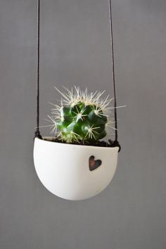 Ceramic Hanging Planter with Cactus/Succulent.  High fired ceramic cup with a glazed inside to hold water from the soil, finished with an embossed heart. Will come with either a succulent or cactus.  Comes with brown string attached as seen in the photographs .  Dimensions- Approx  Ceramic Planter: Width- 6cm Height-5.5cm Brown string Approx- Height- 20cm -30cm  Please handle all ceramic items with care as they are fragile and may break if you drop them on a hard surface. Planters can be…