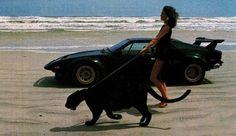 Creative Photography, Yimmy, Yayo, Legendary, and Success image ideas & inspiration on Designspiration Creative Photography, Amazing Photography, Beach Video, Car Girls, Its A Wonderful Life, Travel Light, Black Panther, Jaguar, Monster Trucks