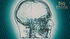 Nicholas Negroponte: Nanobots in Your Brain Could Be the Future of Learning