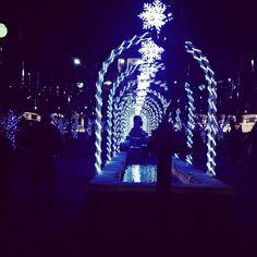 Christmas lights in Hot Springs.
