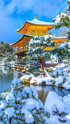 Get Lots Of Good Tips Here About Travel – Everything you need to know about Japan Nature Landscape, Japan Landscape, Japanese Castle, Japanese Temple, Beautiful World, Beautiful Places, 1440x2560 Wallpaper, Winter In Japan, Winter Scenery