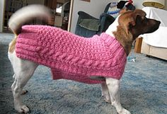 Miss Julia's Vintage Knit & Crochet Patterns: Free Patterns - Everything for Dogs - Coats & Accessories