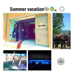 【___erinsta___】さんのInstagramをピンしています。 《𓇼.* * 京都#pic 🐠🐬🌊 * 最近ひよりinsta覗いてくるw それでこれ乗せてって😂(笑) もうアカウント作って♡(笑) * #夏休み#年中#娘#kids#girl#姉妹#japan#動物園#zoo#水族館#aquarium#アクアリウム#京都#kyoto#ライオンは怖くないゴリラが怖いらしい#イルカショー#fasion#sumeer#2016#like4like#follow4follow#instagood#instapic #親バカ#1日で2つ行く勇気#体力底なし#family#love#cute》