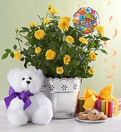 Happy Birthday Bundle Brighten Their Special Day With A Fun And Festive Surprise Our Cheerful