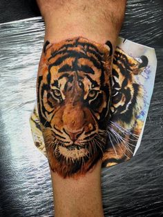 Realistic tiger face tattoo on arm - INCREDIBLE!