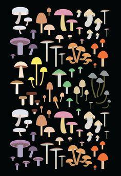 Mushroom Fungi Vector Art Poster by NeatoNectarine on Etsy