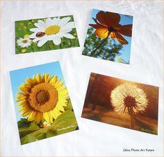 Lot de 4 cartes postales 10,5x15cm Coccinelle et soleils réalisées avec les photos de Céline Photos Art Nature. : Cartes par celinephotosartnature Celine, Photo Art, Nature, Tableware, Photos, Etsy, Ladybug, Handmade Gifts, Cards