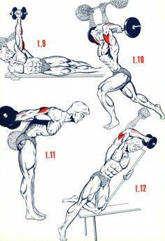 Unterarm treining