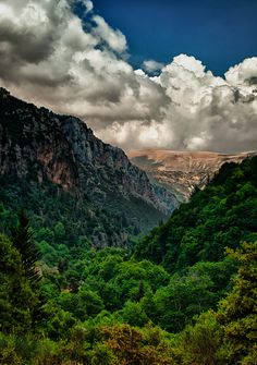 The limitless forests of Kadisha Valley in Lebanon I'd maybe try another helicopter for this...