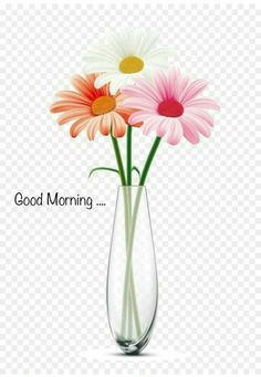 Are you looking for the best beautiful good morning quotes pictures, photos & images? Explore the best good morning images only at one platform named HappyShappy. Good Morning Tuesday Images, Good Morning Beautiful Pictures, Special Good Morning, Good Morning Beautiful Images, Good Morning Picture, Good Morning Flowers, Good Morning Good Night, Morning Pictures, Morning Pics