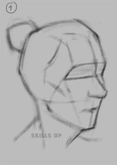 Exceptional Drawing The Human Figure Ideas. Staggering Drawing The Human Figure Ideas. Face Drawing Reference, Human Figure Drawing, Figure Sketching, Drawing Practice, Anatomy Reference, Drawing People Faces, Drawing Heads, Anatomy Art, Anatomy Drawing