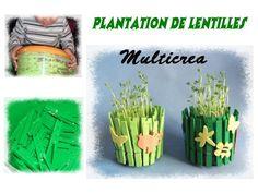 Lapins pince linge activit manuelle pinterest blog - Activite pince a linge maternelle ...