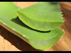 Aloe vera (Aloe barbadensis) is a succulent plant that is cultivated all over the world for its thick gelatinous leaves. It is an excellent top superfood, no...