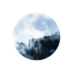 Forest Photo, Circle Photo, nature print, Circle Photo, Digital... ($7.64) ❤ liked on Polyvore featuring image