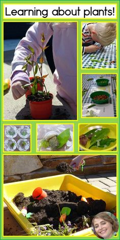 A fun blog post about ways to explore plants with students who have special learning needs.