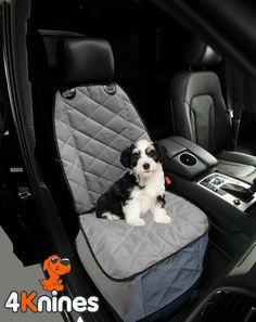 Does your pup love to ride shotgun to help you run errands? A 4Knines Front Seat Cover is for you! Keep your front seat free of fur and dirt. http://www.amazon.com/gp/product/B00KAFYNTY