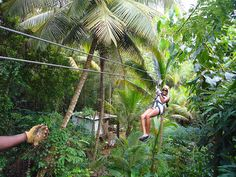 Ziplining at Treetop Adventure Park St. You can do it too in Guadeloupe Islands come and visit us! Dream Vacations, Vacation Spots, Places To Travel, Places To See, St Lucia Honeymoon, Southern Caribbean Cruise, Chill, Virgin Atlantic, Thinking Day