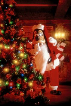 Disney World offers a New Holiday dining experience at Hollywood and Vine for the 2015 holiday season. Disney Very Merry Christmas, Disneyland Christmas, Disney World Christmas, Disney Holidays, Xmas Holidays, Christmas 2015, Christmas Pictures, Christmas Decor, Disney Destinations