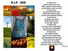 RIP Zed