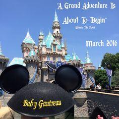 Disney pregnancy announcement